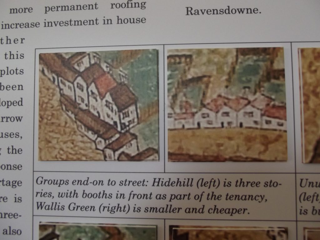Detail from Map showing houses
